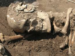 firs roman skeleton